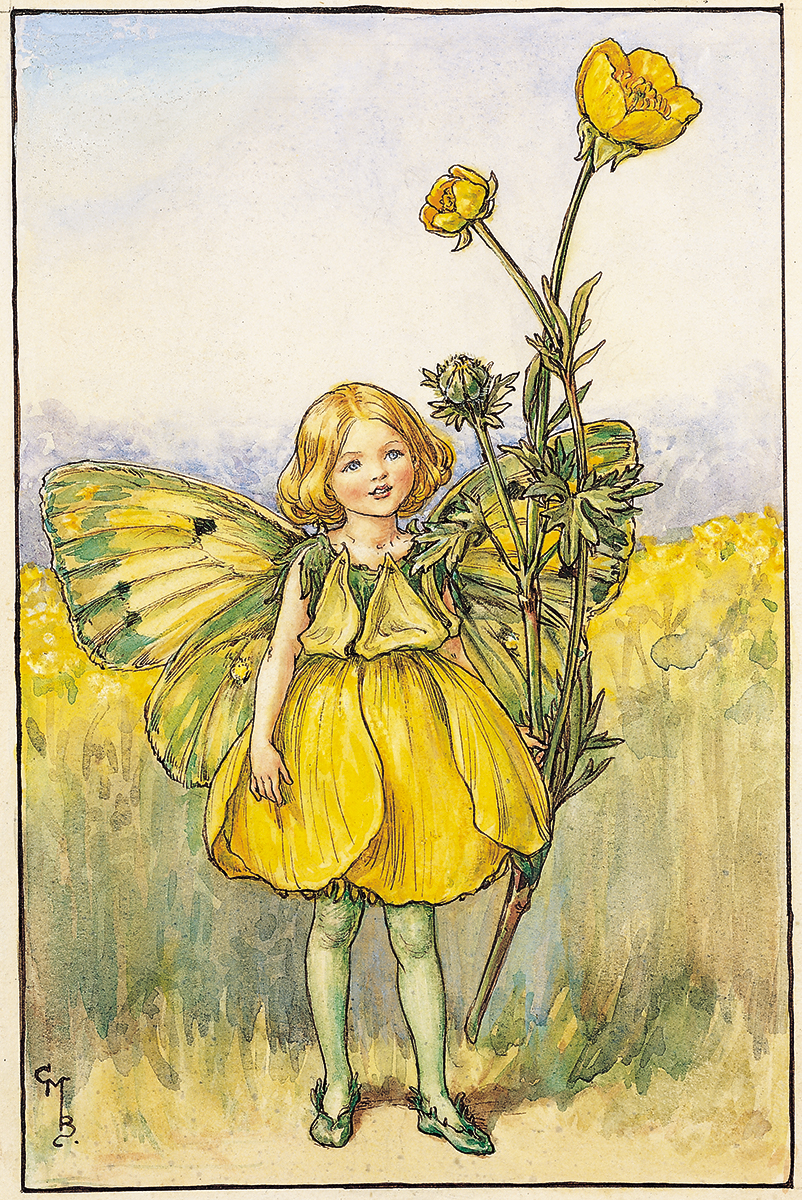 The Fairies Of The Summer Archives Flower Fairies
