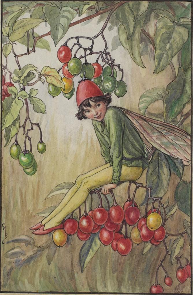 Nightshade Berry flower fairy