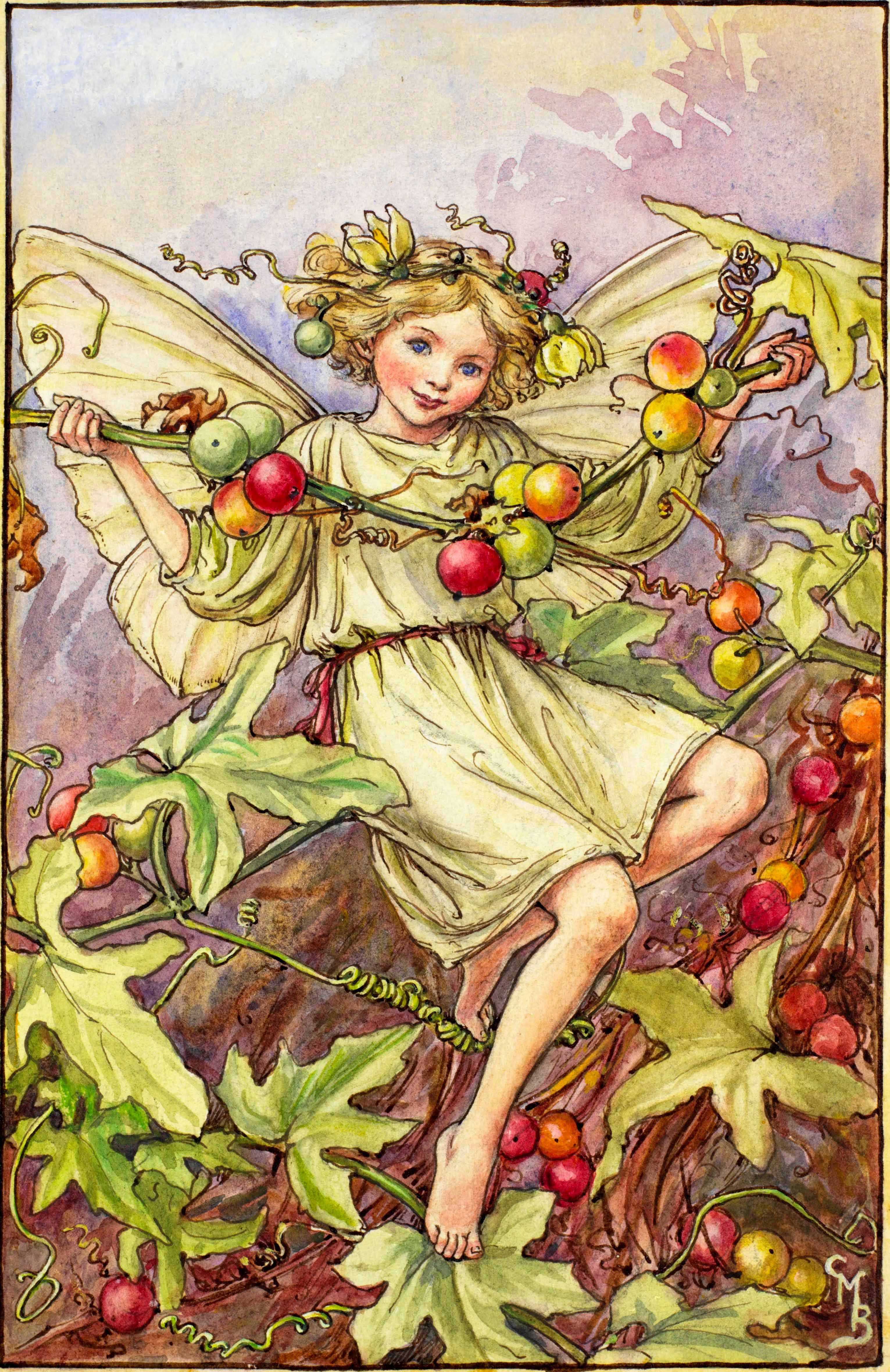 news & events - flower fairies
