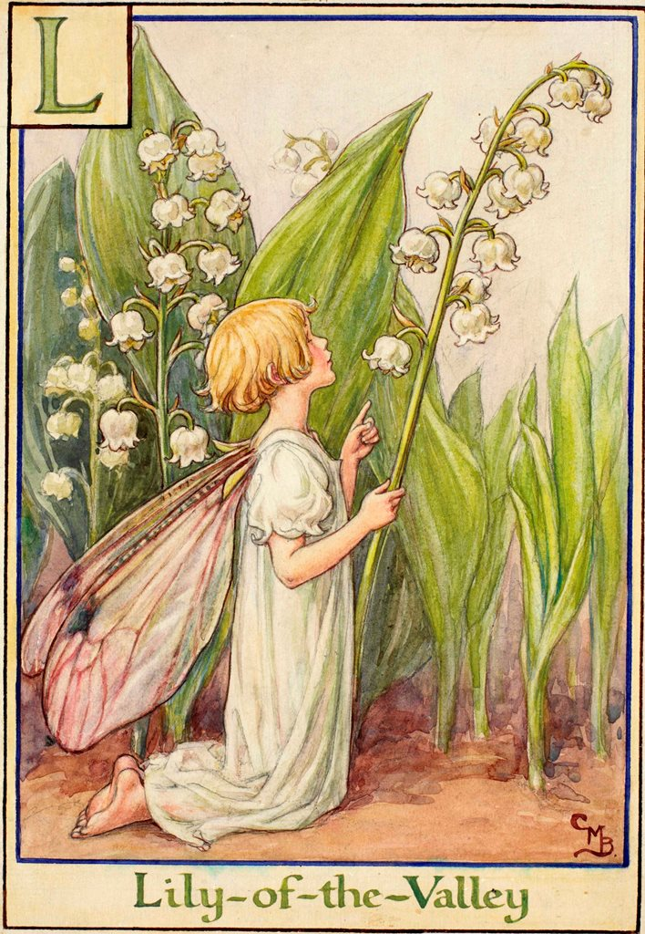 The Lily Of The Valley Fairy Flower Fairies