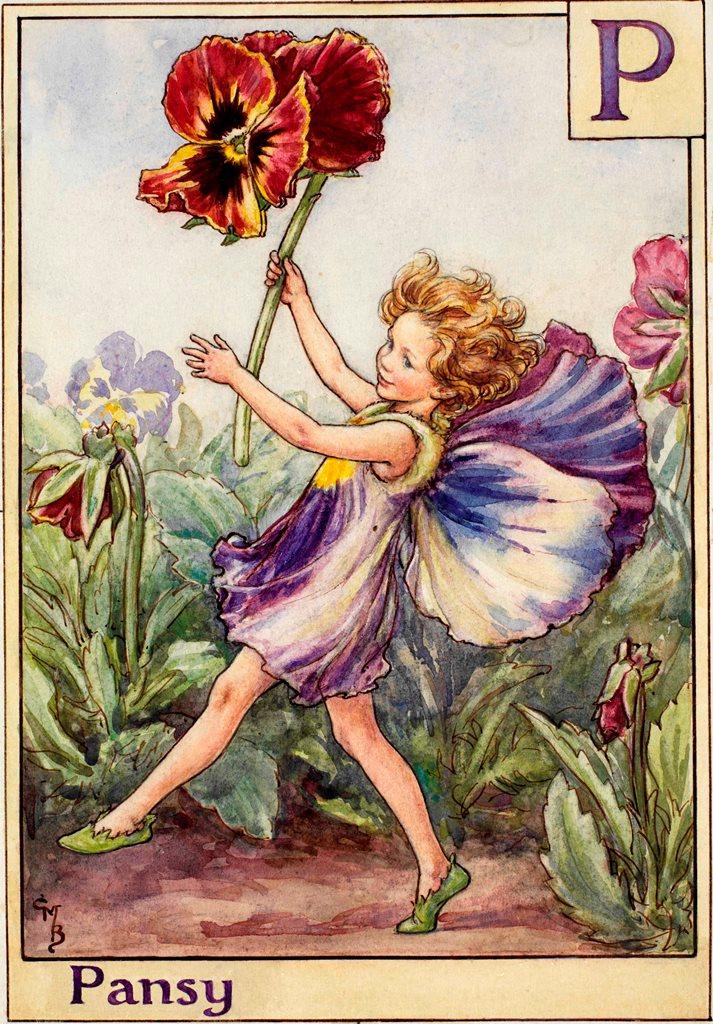 The Pansy Fairy - Flower Fairies