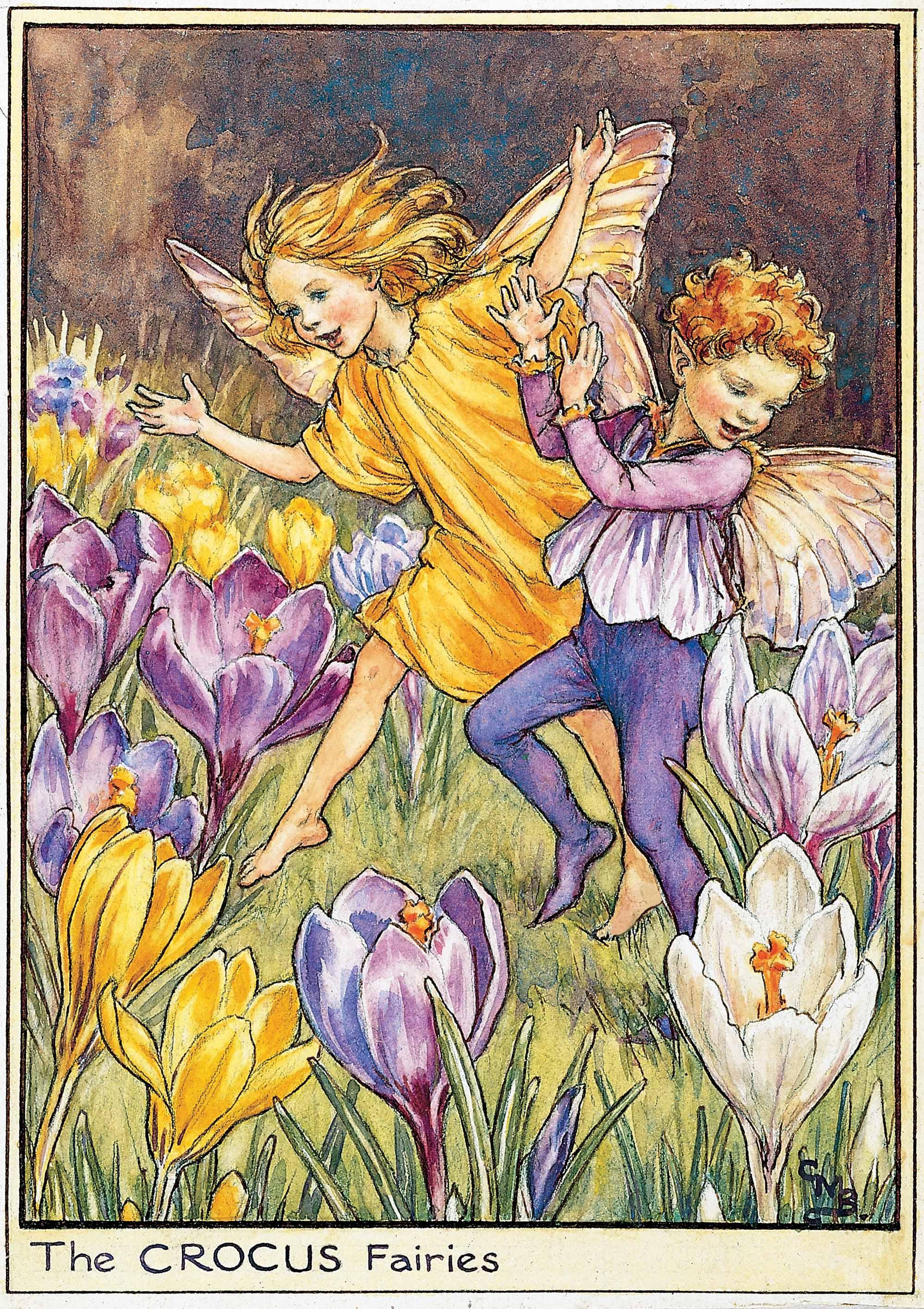 Crocus Flower Fairies