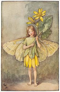 Celandine Flower Fairies