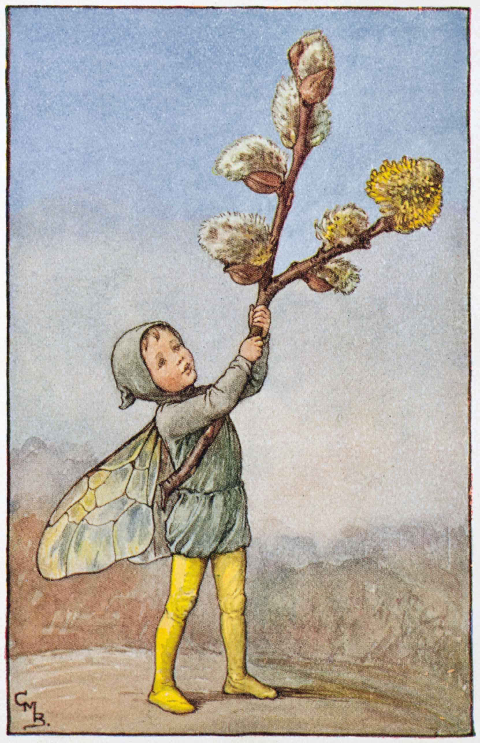 Willow-Catkin Flower Fairies