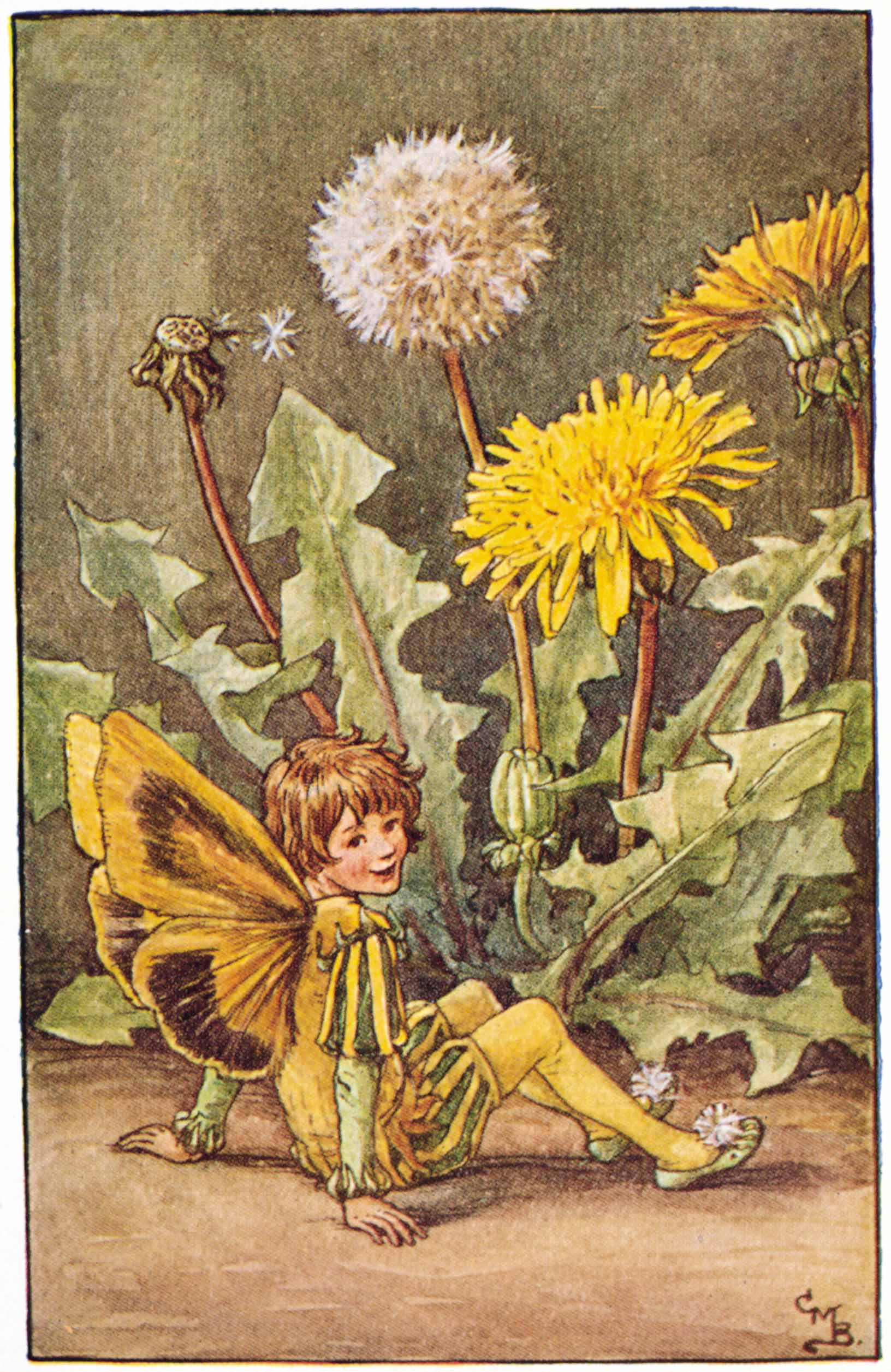 Dandelion Flower Fairies