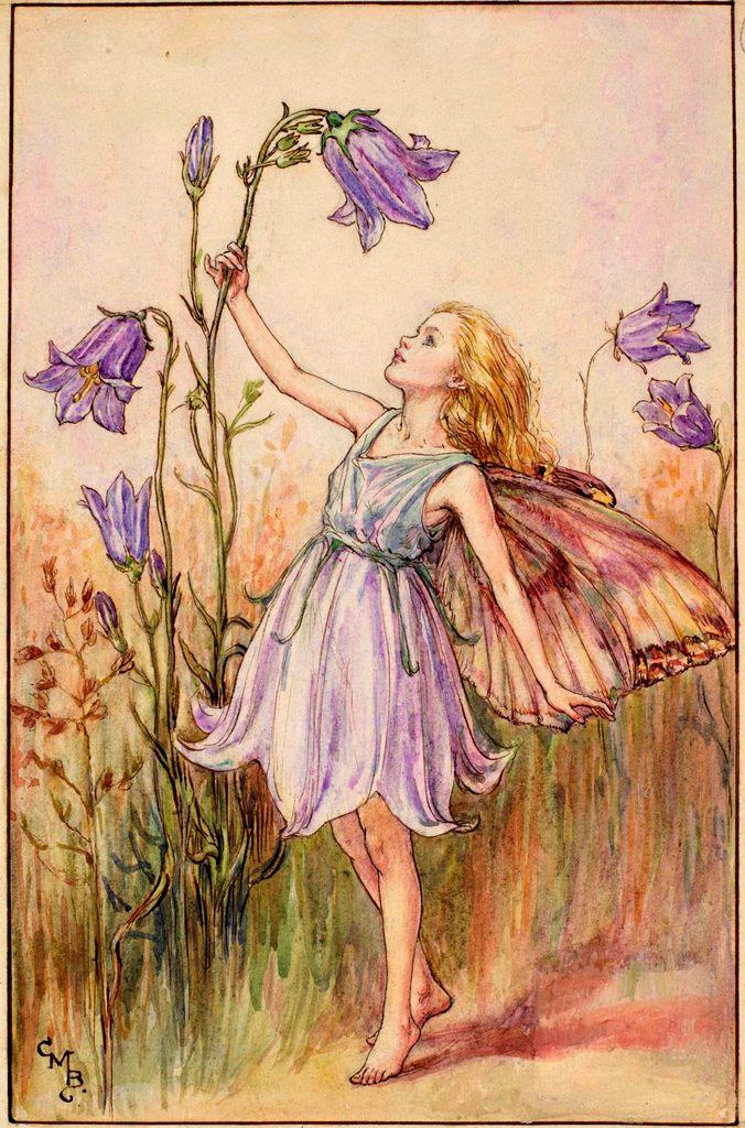 Harebell flower fairies