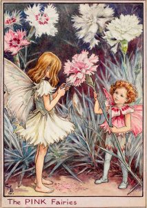 Pink flower fairies
