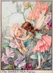 Sweet pea flower fairies