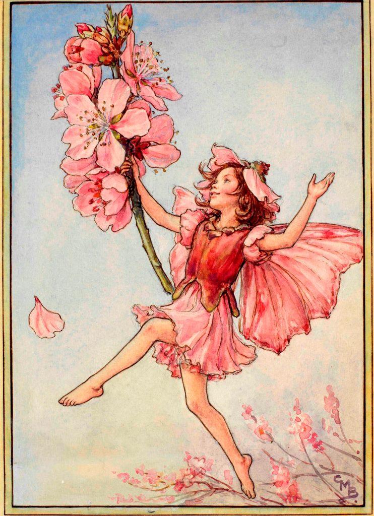 Almond blossom flower fairy