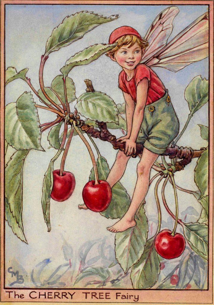 Cherry Tree flower fairy