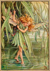 Willow flower fairy