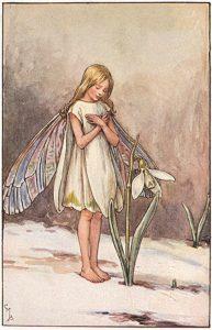 Snowdrop flower fairies